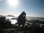 New Year's Day on the Pacific coast.